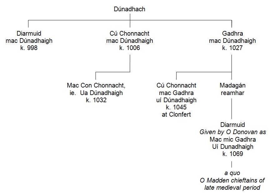 early Siol Anmchadha pedigree